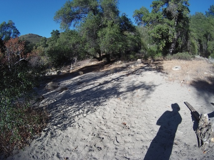 Agua Caliente Creek Trail Camp on PCT.