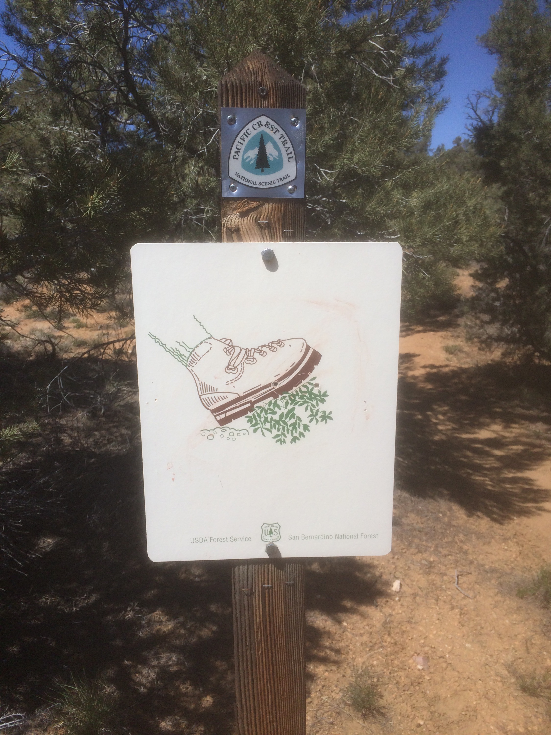 We saw this sign on the trail today, not really sure what it meant...