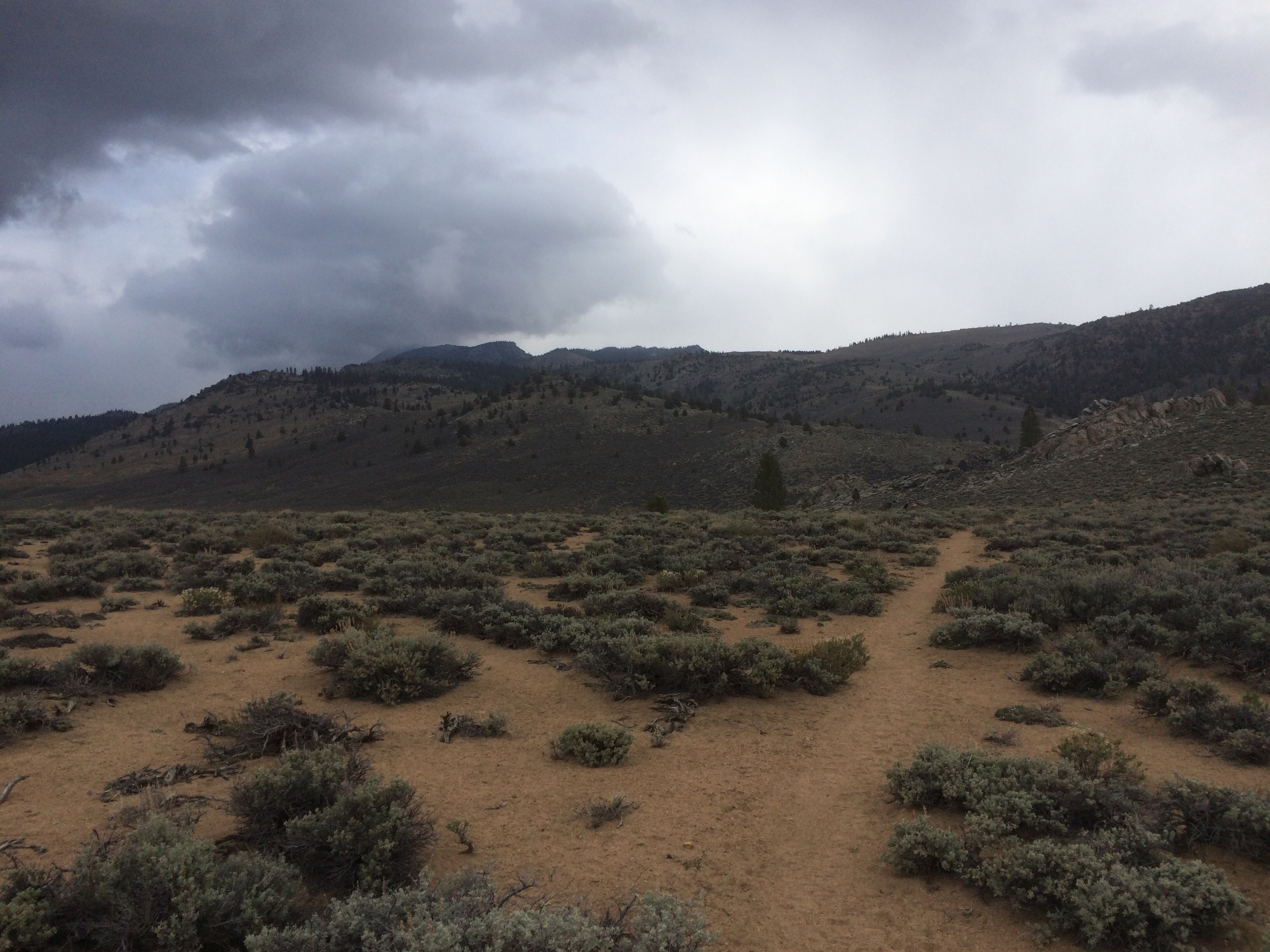 Hiking into the dark clouds.