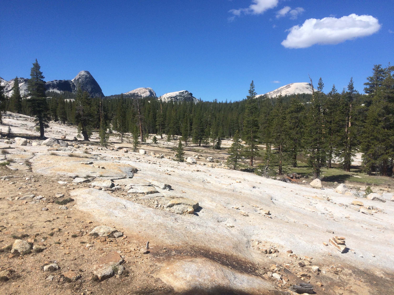 Domes in Yosemite!