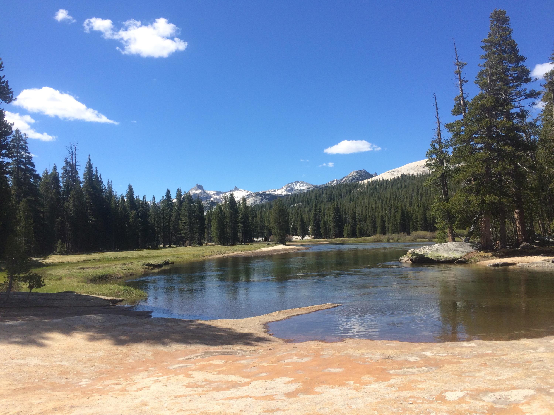 Landscape in Yosemite!
